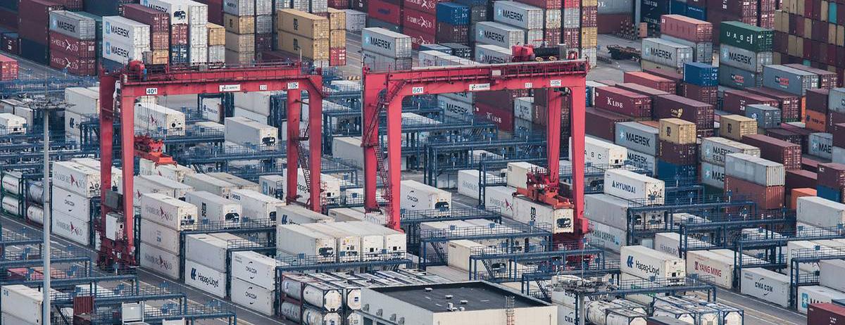 ТТ Клуб застраховал все терминалы группы Global Ports